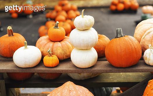 Assortment of fresh pumpkins - gettyimageskorea