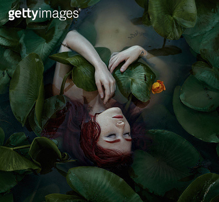 Nymph - gettyimageskorea