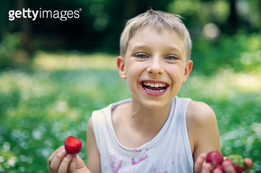 Happy little boy sitting on grass and eating strawberries.  Nikon D850 - gettyimageskorea