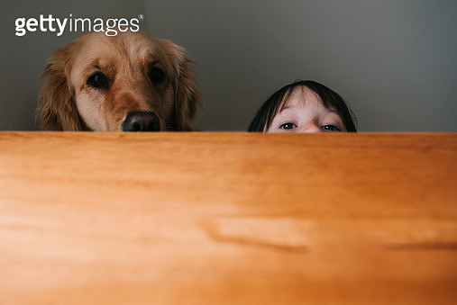 Girl hiding behind a table with her dog - gettyimageskorea