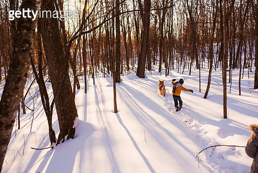 Boy and girl walking through a forest in the snow with his dog, United States - gettyimageskorea