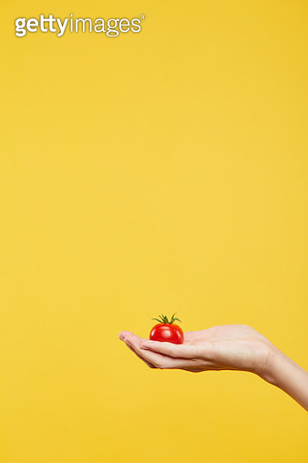 Hand holding a tomato - gettyimageskorea