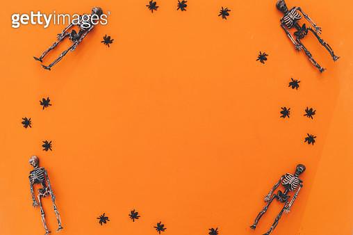 halloween background skeletons and spiders in orange - gettyimageskorea