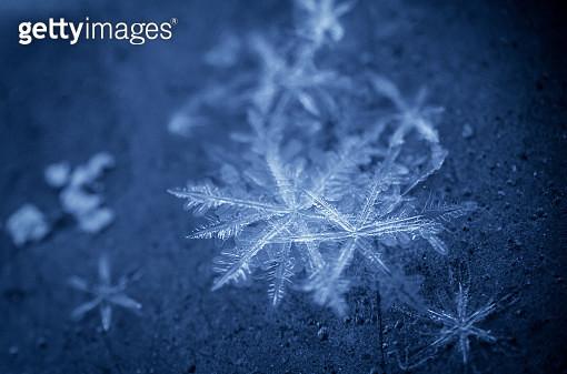 snowflakes - gettyimageskorea