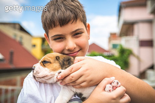 Little boy with his dog - gettyimageskorea