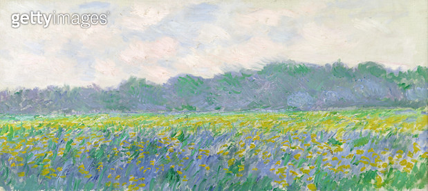 <b>Title</b> : Field of Yellow Irises at Giverny, 1887 (oil on canvas)<br><b>Medium</b> : oil on canvas<br><b>Location</b> : Musee Marmottan, Paris, France<br> - gettyimageskorea
