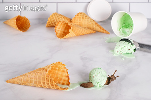 Overhead shot of brown snail with a scoop of mint chip ice cream for a shell crawling across a marble table among ice cream cones. - gettyimageskorea