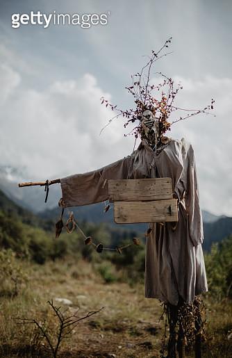Halloween Scarecrow at the farm - gettyimageskorea