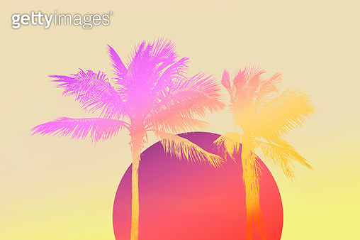 Retro style background of Miami with palm tree and big dawn sun. - gettyimageskorea