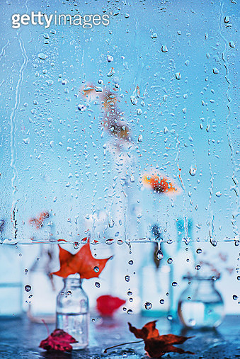 Rainy day: Autumn begins - gettyimageskorea