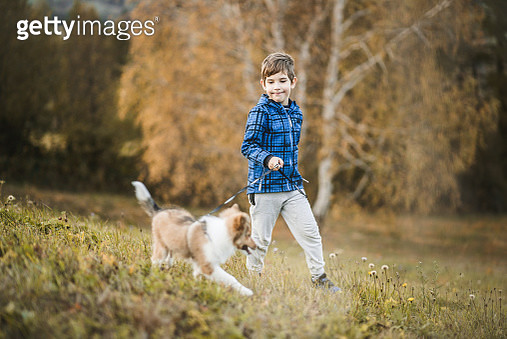 Little Boy and His Best Friend - gettyimageskorea