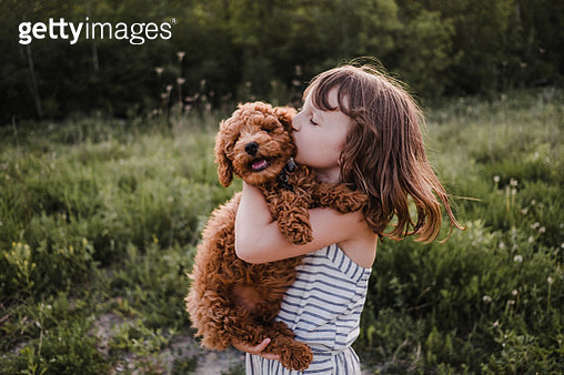 Puppy turning away from girl's kisses - gettyimageskorea