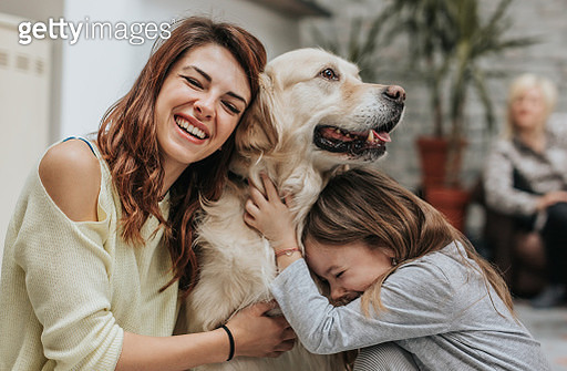 Happy mother and daughter embracing their golden retriever at home. - gettyimageskorea