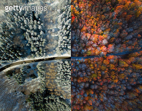 Creative picture taken from drone perspective directly from above of same mountain road in the Montseny nature reserve in Catalonia half during autumn with forest and the other during winter with snowy landscape. - gettyimageskorea