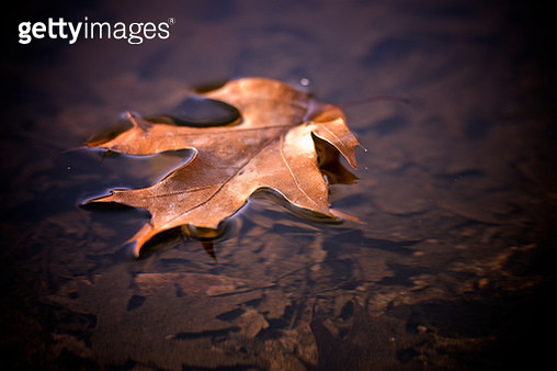 Photo by: j van cise photos - gettyimageskorea
