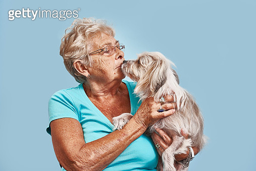 Elderly women giving her pet dog a kiss - gettyimageskorea