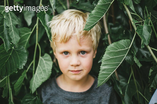 Portrait of Boy surrounded by leavs - gettyimageskorea