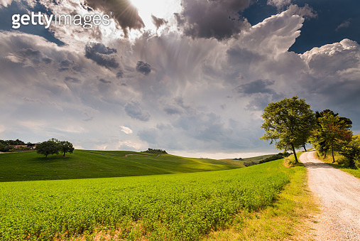 Sunny afternoon in Tuscany, Val d'Orcia, Italy - gettyimageskorea