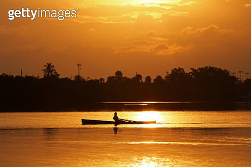 Sculling (Rowing) at sunrise in Palm city, Florida, USA - gettyimageskorea