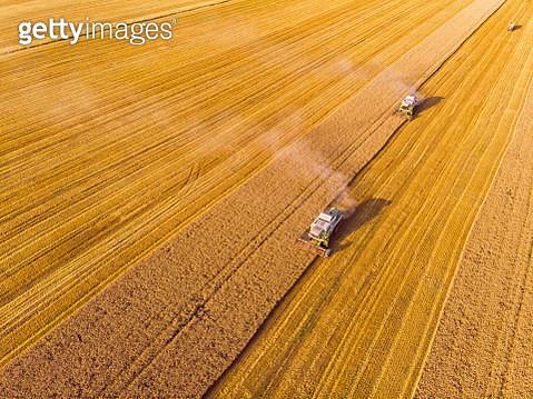 Combine harvester on field - gettyimageskorea