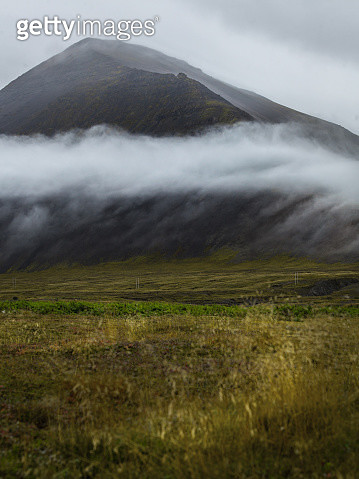 Grass, Plants And Bushes In The Front. Mountain With Fog In The - gettyimageskorea