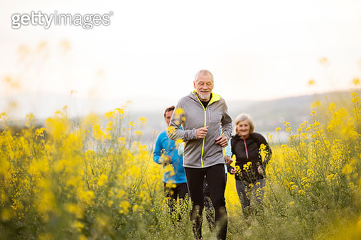 Group of seniors running outside on the meadow. - gettyimageskorea