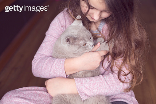 Little cat with girl - gettyimageskorea