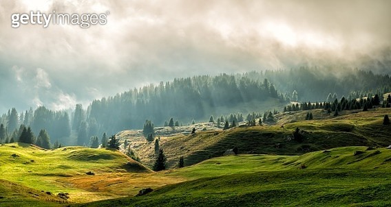 Tranquil, green and misty scenery of highlands with warm backlight and clouds on Alp Flix in Parc Ela in Graubünden, Switzerland - gettyimageskorea
