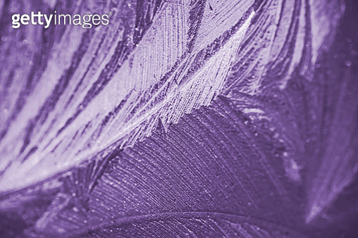 Close-Up Of Frost pattern on car - gettyimageskorea