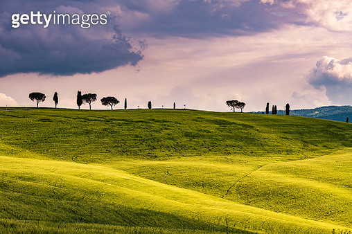 Sunny landscape from Val d'Orcia, Tuscany, Italy - gettyimageskorea