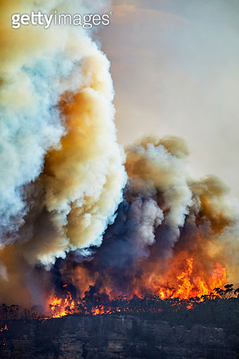 Out of control fire on Narrow Neck Plateau, Katoomba, Blue Mountains, Australia. Climate change is causing extreme weather, prolonged droughts and increasing bushfires - gettyimageskorea