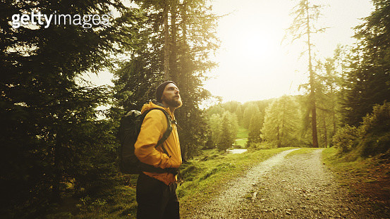 Man hiking and exploring forest area - gettyimageskorea