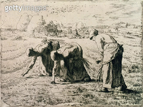 <b>Title</b> : The Gleaners, 1855 (etching)<br><b>Medium</b> : etching<br><b>Location</b> : Private Collection<br> - gettyimageskorea