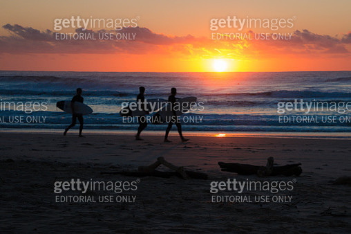 Morning Surfers walking along beach ready to catch the waves in the sunrise - gettyimageskorea