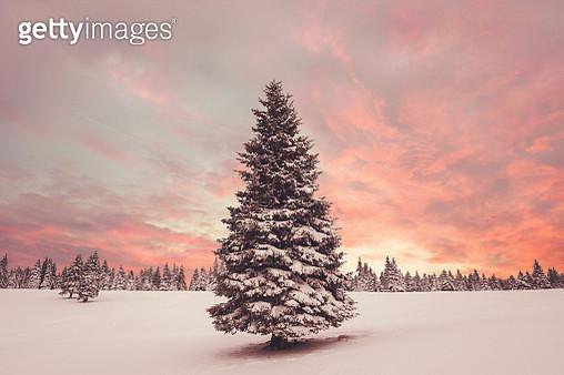Winter Sunset - gettyimageskorea