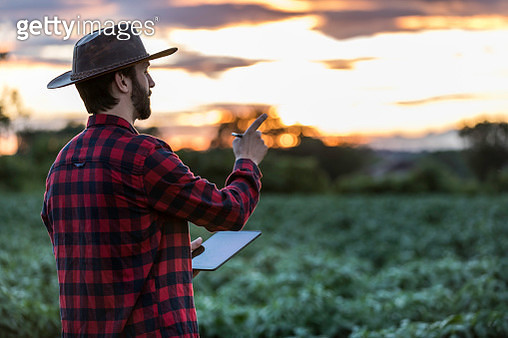 Man Farmer Using Digital Tablet in Field at Sunset - gettyimageskorea
