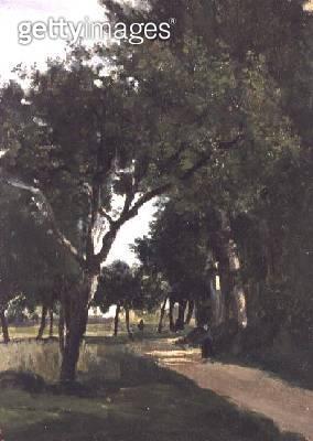 <b>Title</b> : Avenue in the Woods, near Chaville, c.1824<br><b>Medium</b> : oil on canvas<br><b>Location</b> : Noortman, Maastricht, Netherlands<br> - gettyimageskorea