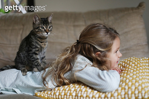A little girl with her cat at home - gettyimageskorea