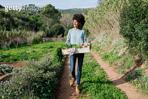 Woman walking in the field, carrying a vegetable crate - gettyimageskorea
