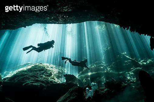 Scuba divers swim in front of crisp light rays  shining through the trees down into Mexico's Yucatan cenote and cave system. - gettyimageskorea