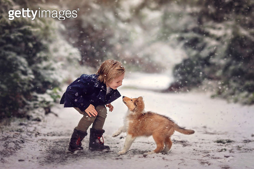 Young child playing with collie puppy in the country - gettyimageskorea