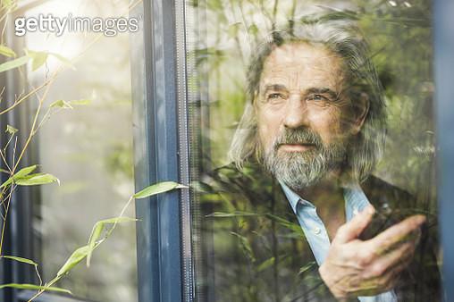 Senior businessman standing by window, using smartphone - gettyimageskorea