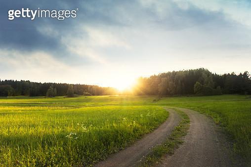 Landskap i Sverige en tidig morgon i slutet av sommaren början av hösten - gettyimageskorea