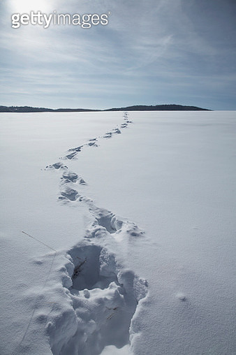 Footprints in snow covered landscape - gettyimageskorea