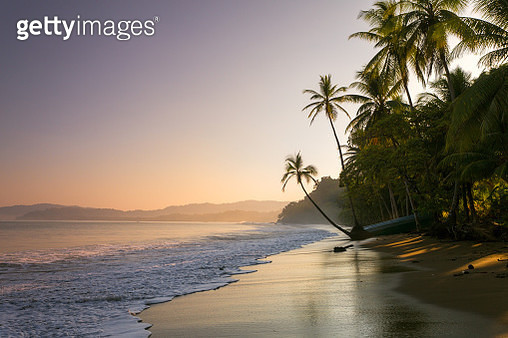 Colourful sunset on palm fringed beach, Bahia Drake (Drakes Bay), Osa Peninsula, Costa Rica - gettyimageskorea