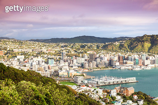 Wellington city center and harbour at sunrise - gettyimageskorea