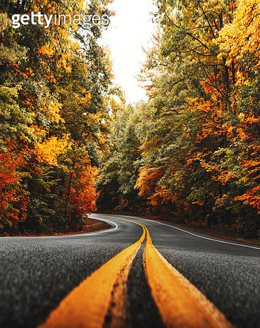 autumnal road in new england - gettyimageskorea
