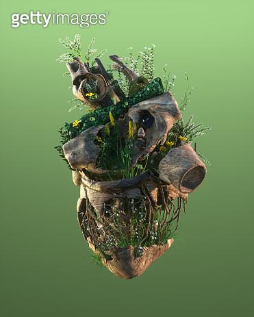 Nature Heart. - gettyimageskorea
