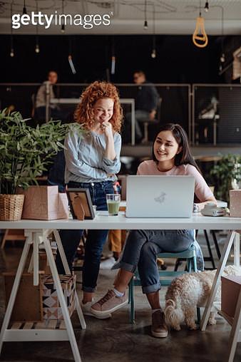 Women working in modern office - gettyimageskorea