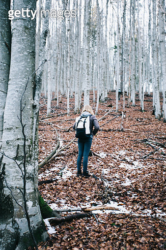 Rear View Of Woman Standing In Forest During Winter - gettyimageskorea